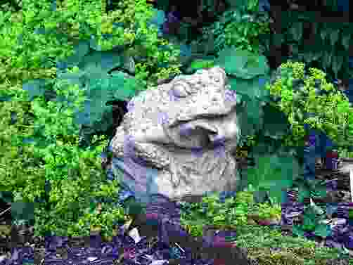 Horny Toad Statue