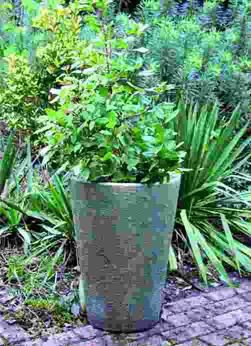 Grand Long Tom Stone Garden Pot